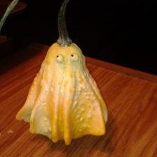 Gourd Ghost